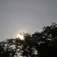 6月24日、午前6時ぎの空模様