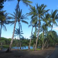 太平洋の楽園 ハワイ島4日目