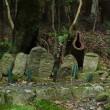滋賀県の多賀~犬上ダム~百済寺を走る