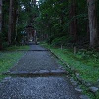 苔の寺 宵闇の中