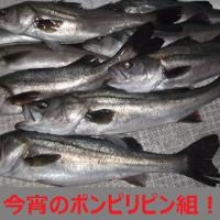 19日ナイト・・チョットいい気持ち便!