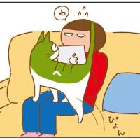 ネコの使い方