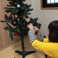 2年ぶりのクリスマスツリー