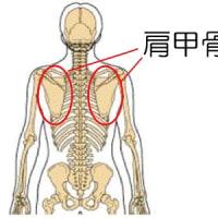 良くならない腰痛はココを診ろ!      石川県  整体  評判  オススメ