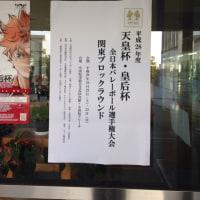 10月23日 天皇杯関東ブロック予選 小田原アリーナ