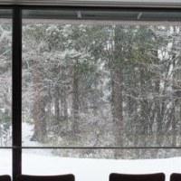 粉雪。牡丹雪。細雪。