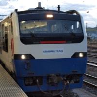 夏の臨時列車/ハーバー函館