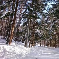 嬬恋で雪遊び