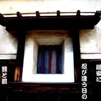 写真俳句・相聞句-1