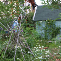 大草原の小さな家のお庭みたい*O's garden