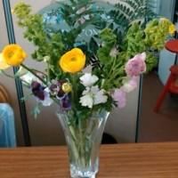 2月2回目の花