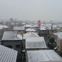 11月の雪・・・