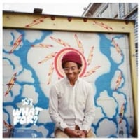 Toro Y Moi /What For?