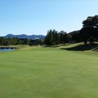 ゴルフシューズ③-2