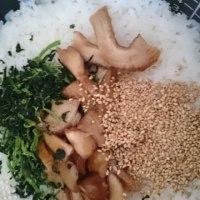 昨日の肉厚シイタケの茎