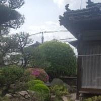 日本情緒あふれる、、地主様のお宅