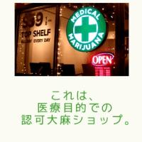 不思議な大麻取締法 所持はアウトで使用はOK…なぜ?