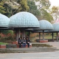 月曜日 2人で花博公園へ