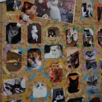 GWに東京日本橋三越で行われた「ねこ・猫・ネコ」イベント。5月18日から京都伊勢丹で