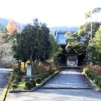 西林寺の紅葉 2016.12.02