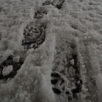 大雪(?)の名古屋