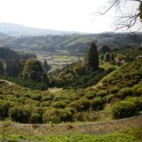 熊本2010