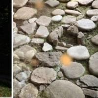 谷川岳天神平 と 史跡 水上石器時代住居跡