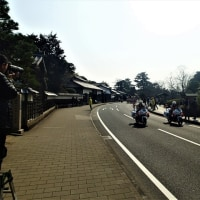 松江レディースハーフマラソンを観戦