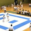 H29.6.4 茂原市空手道選手権大会