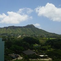 ハワイ旅行3日目  ハワイでも掘ってます