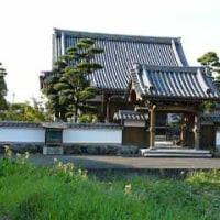 Culture of Japan Matcha #1