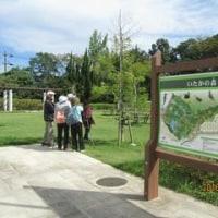秋 竹林コース