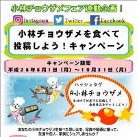 ~小林チョウザメフェア第3弾~今度は丼対決!!