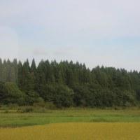 青い森鉄道全駅下車の旅18(完)~三沢駅・上北町駅