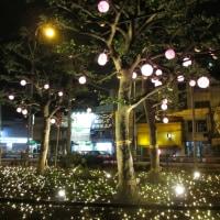 ♪♪ 大阪中崎町のイルミネーションが...