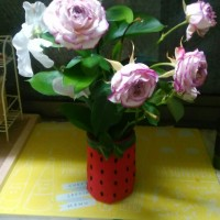 一ヶ月前の切り花