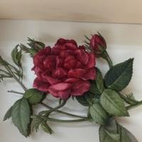 一輪の薔薇が