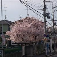 第62回 入学式 校長式辞