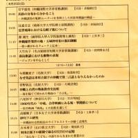 2017年度沖縄文化協会公開研究発表会:沖縄文化総合研究所の創設が必要ですね。芸大は「ミニ東京芸大」(?)の風評!