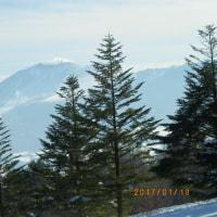 1月19日(木)のレッスン