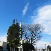 今日は母の命日、昨日は墓参、それよか、エライオソームについての福島第一中学自然科学部の研究、すごいです。