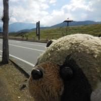 うだつの町並み散策の注意点~クリン家ドライブ四国旅行・5
