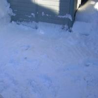 再び大雪の日