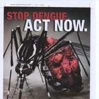 デング熱に感染するとジカウイルス感染も重症化してしまう報告