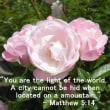 あなたは、イエスが弟子たちのことを「世の光」と励ましたのをご存知でしたか?