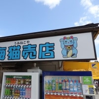 松島・平泉へ行ってきた!