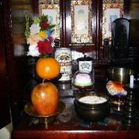 不思議な蜜柑と林檎