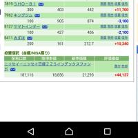 太陽光が乗る 3/17の株の結果