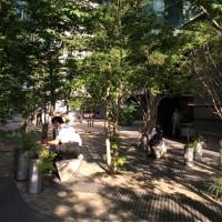 街ナカみどり    星のや 東京