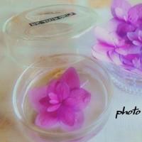・ ゜ ・ 紫陽花    L i f e    n o w ・ ゜ ・